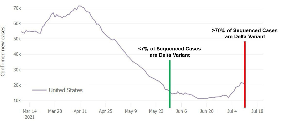 US-Delta-and-Cases.jpg